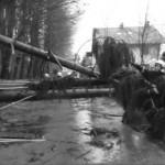 2007 Sturm Kyrill mit über 120 km/h